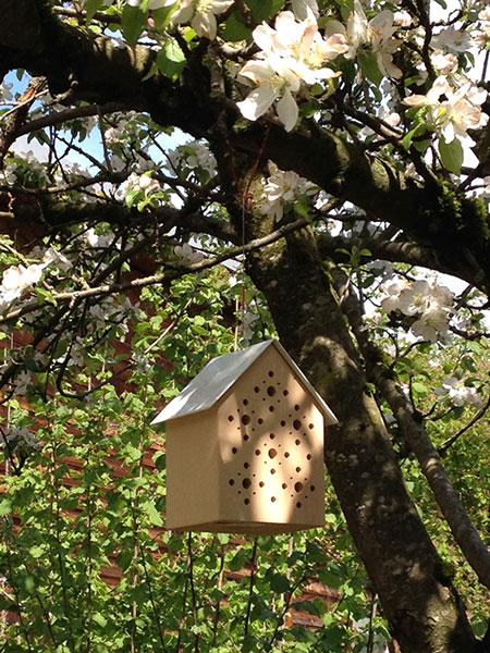 Bienenhotel-_Ambiente-im-Baum